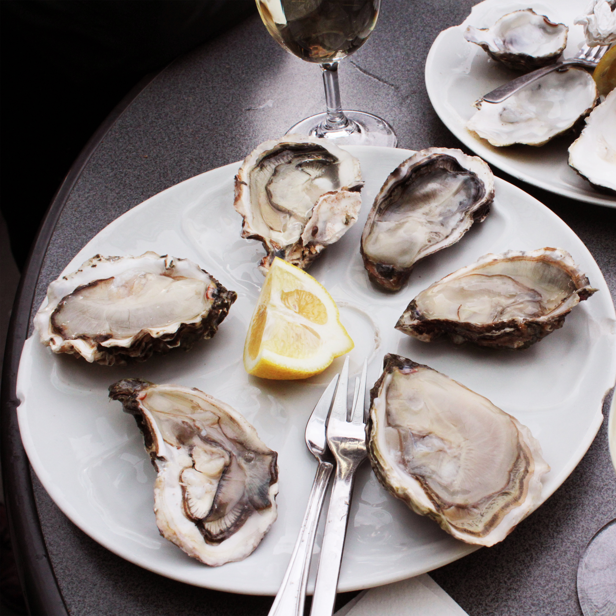 THE OYSTER CRAZE IS REAL